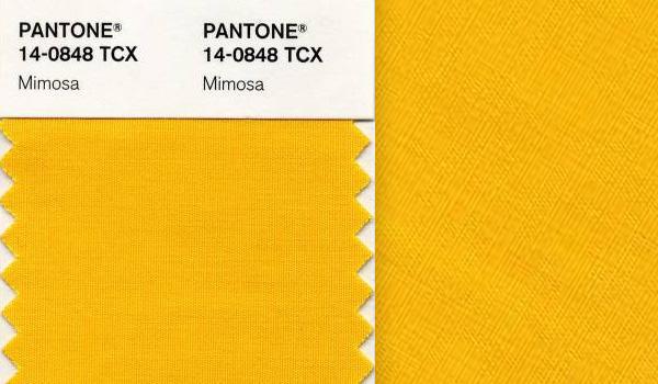 Il giallo Mimosa è il Pantone 2009