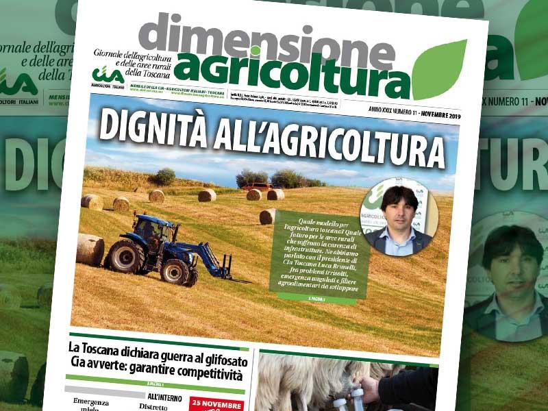 Dimensione Agricoltura di novembre 2019. Dignità all'agricoltura